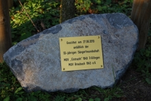 Stein am Baum zu 55Jahre Freundschaft